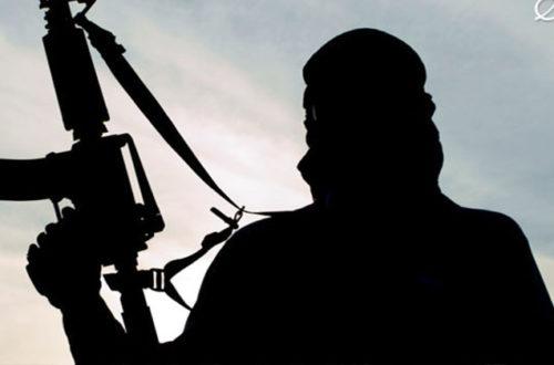 Article : Attaque terroriste en Côte d'Ivoire ce que je pense !